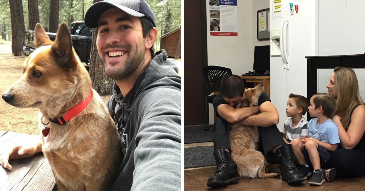 This Dog Was Lost In The Woods For 28 Days And She Couldn't Believe It When She Was Reunited With Her Family