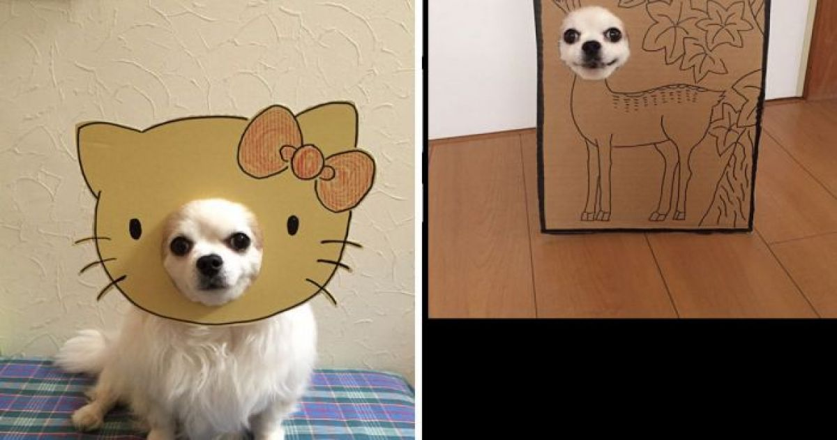 14 Times This Pupper Inspired Cosplay Creativity