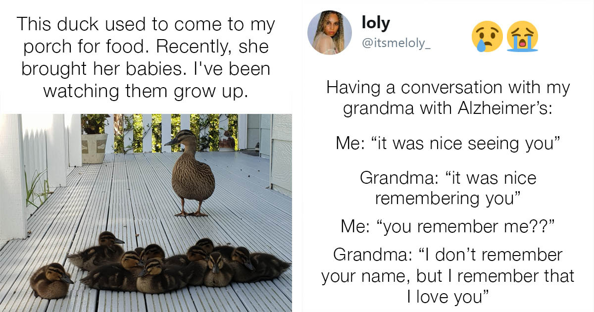 Wholesome Photos That Will Restore Your Faith in Humanity
