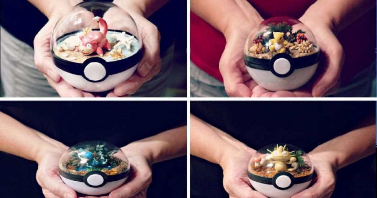 Poké Ball Terrariums Are Now In Demand In A Big Way