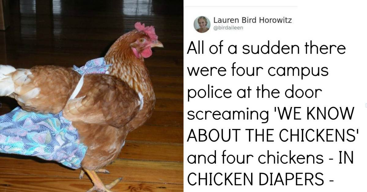 People Share Stories About Their Terrible Roommate Encounters