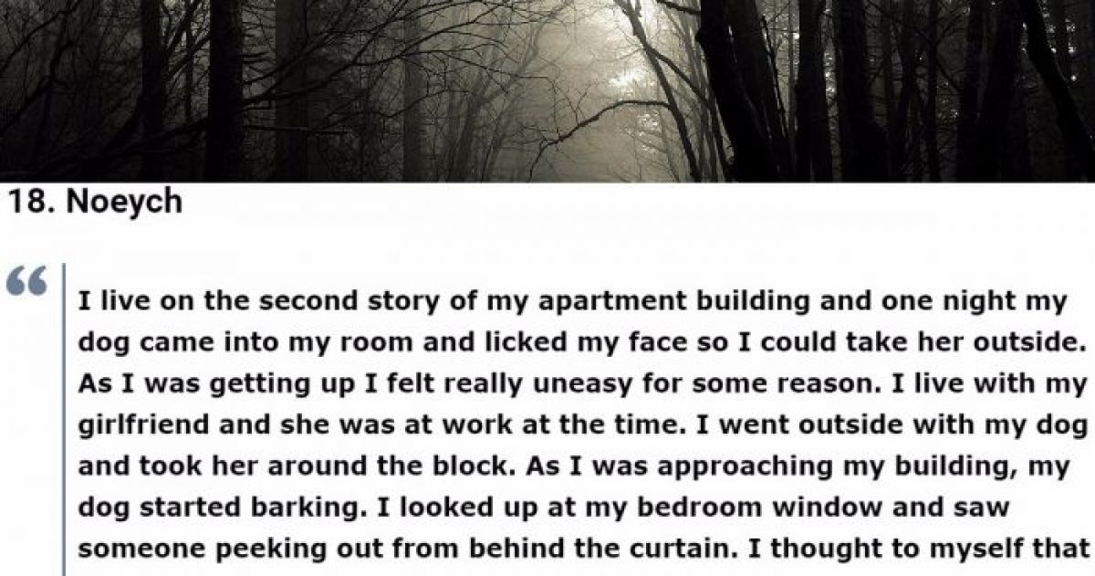 45 People Who Were Accused Of Lying After Telling These Terrifying Stories